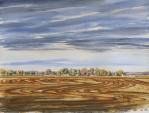 Autumn Wheat Field