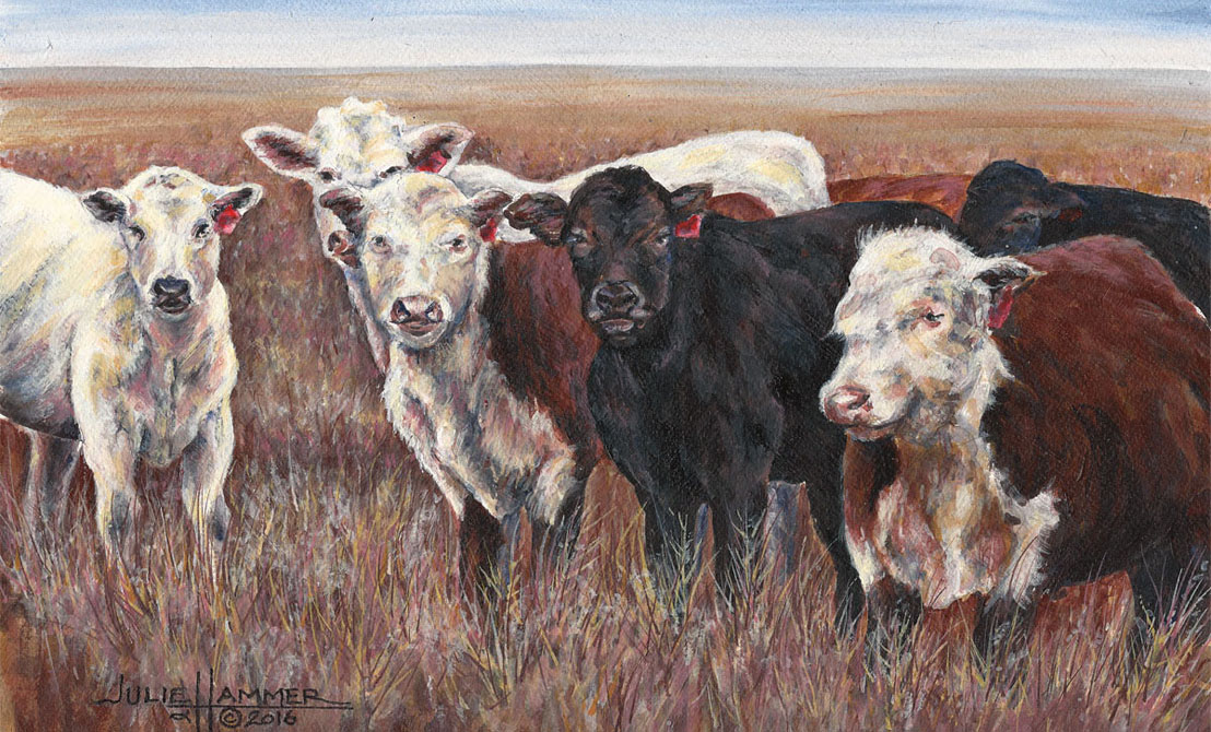 Cattle Herd acrylic painting by Julie Hammer, artist